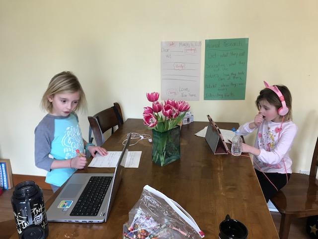 This is my girls Julia and Emily doing their distance learning.